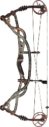 Hoyt Carbon Element
