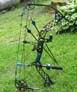Mathews Z7 on the grass - another perspective